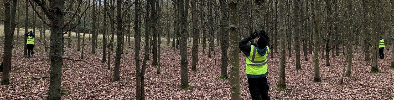 Acres Wild Woodlands